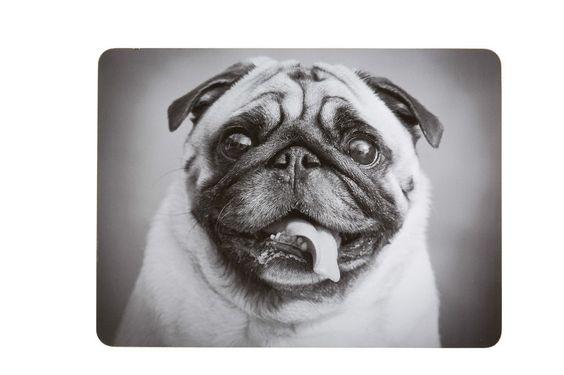 Pug Dachshund Boxer Rottweiler Dog Laminated Placemats Pk 4 KCPMDOGPK4 | eBay