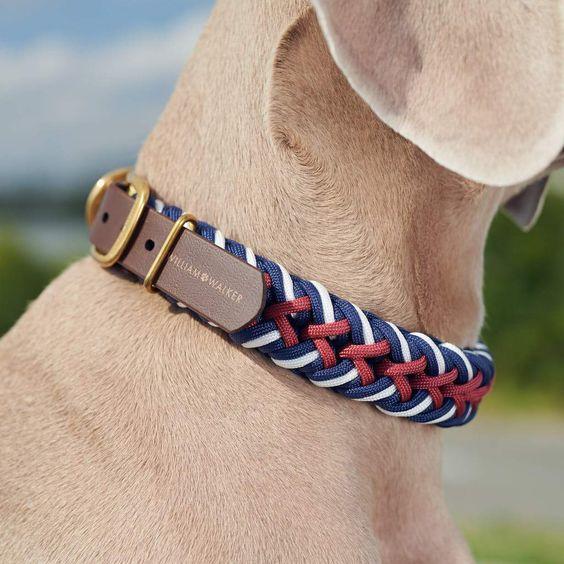 Dùng đa năng Paracord để làm dây đeo cổ cho thú cưng