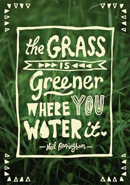 Wise Words Wednesdays. The grass is greener where you water it. Jealousy and envy are dangerous habits to form. Why not put that energy into bettering your life and taking care of yourself? (Photo source)