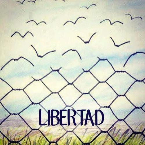 Libertad paradojica