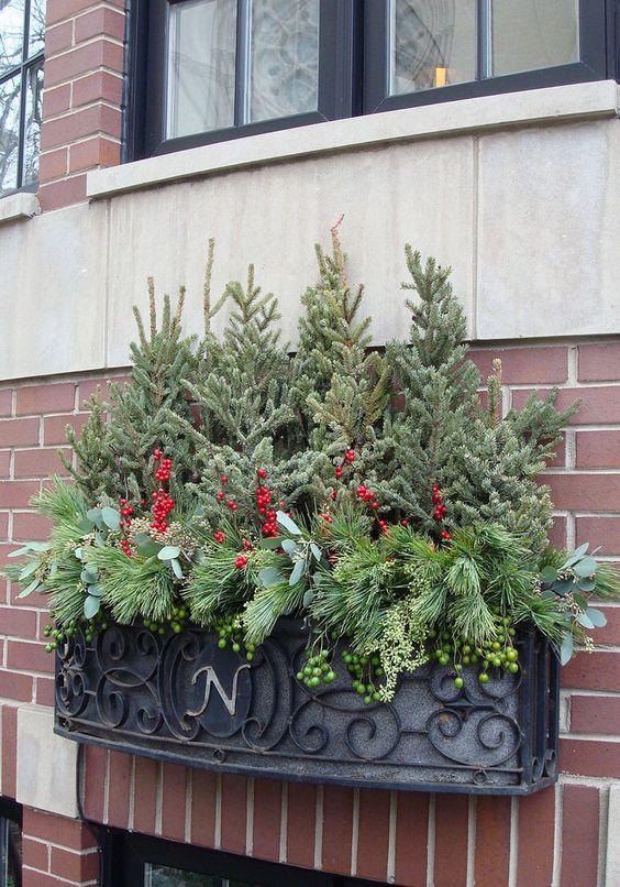 winter, decor, window box, spruce tops, evergreens, urban, garden, landscape, design