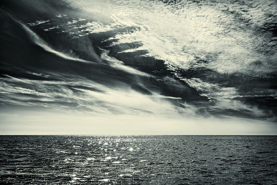 "photoblog: ""the siren sea"""