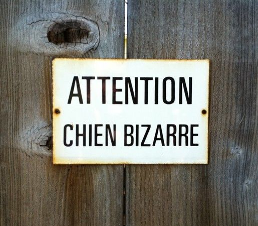 "Vintage French sign: ""Caution Strange Dog."""