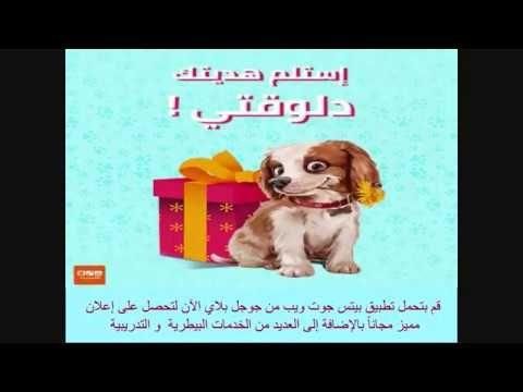 بيتس جوت ويب تقدم لكم أفضل طعام للقطط Petsgotweb Convenience Store Products