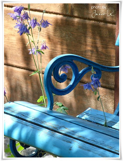 Blue bench with blue flower.