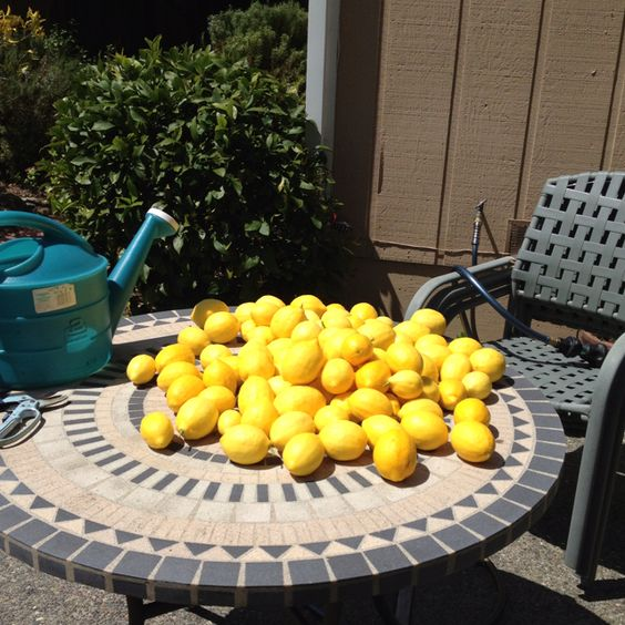Homemade lemonade!! Memories of Arizona~