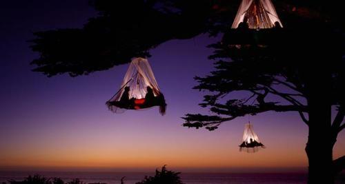 Tree Camping on the Pacific Coast, Elk, California, photo by Louie Psyoyos.: