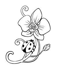 Orchid outline ink pinterest orchids - Orchideen tattoo vorlage ...