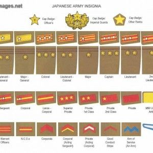 Army Ranks Grades Pictures | Army Ranks Grades Images | Army