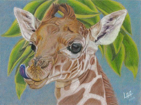 baby giraffe de arteyayiloren en Etsy, láminas decorativas, ilustraciones, ilustration, pencil drawings, lápices de colores