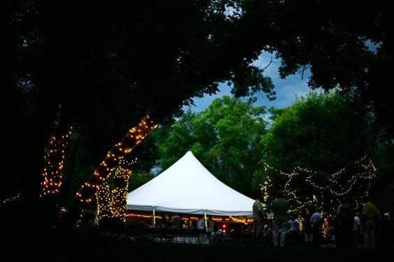 LOVED this backyard wedding