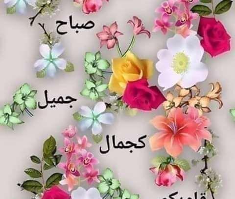 أجمل صباح الورد 20 رسالة صباحية رائعة Love Flowers Beautiful Couple Arabic Love Quotes