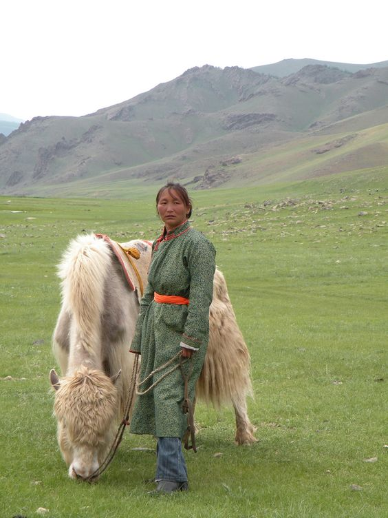 Woman with yak, Mongoilia: