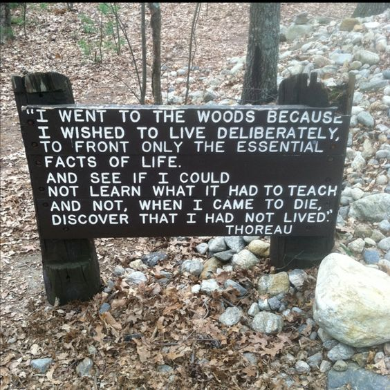 At Walden Pond | Concord, MA