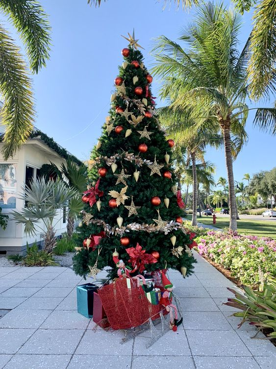 Christmastime in Naples, FL | Oh How Charming by Lauren
