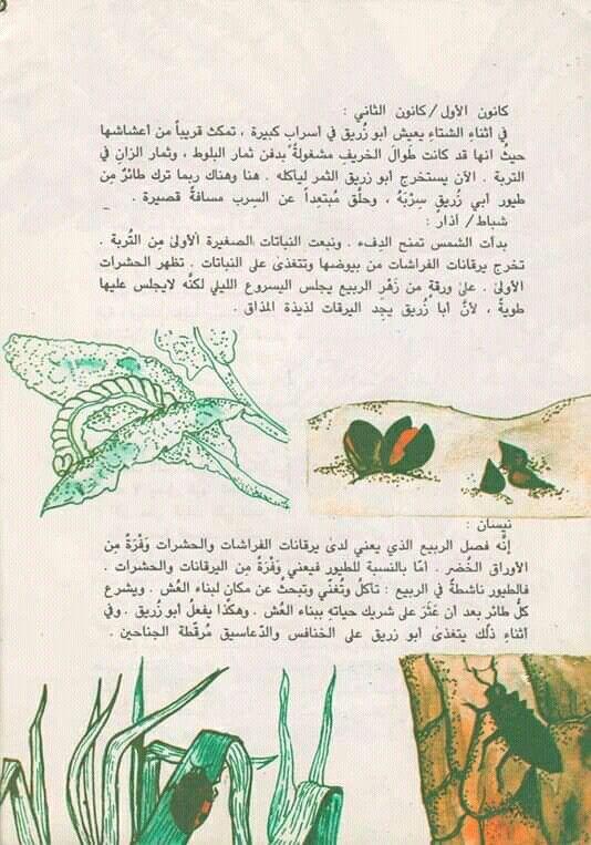 Pin By القراء On إصدارات دار ثقافة الأطفال العراقية Bullet Journal Journal