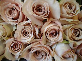 Quicksand roses--a lovely option for your bouquet, a soft blend of champagne/sand/blush