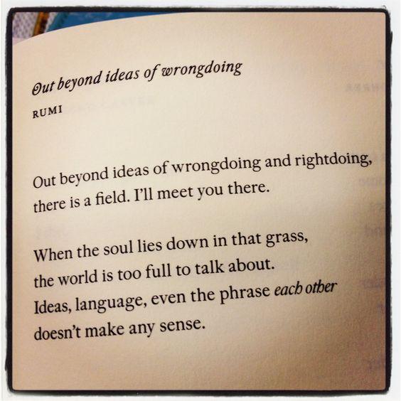 rumi poem field meet me there