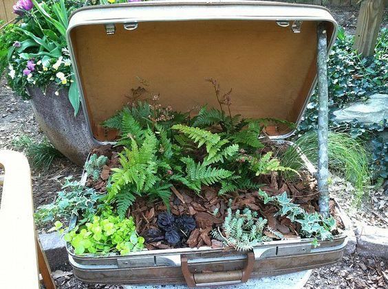A suitcase planter!