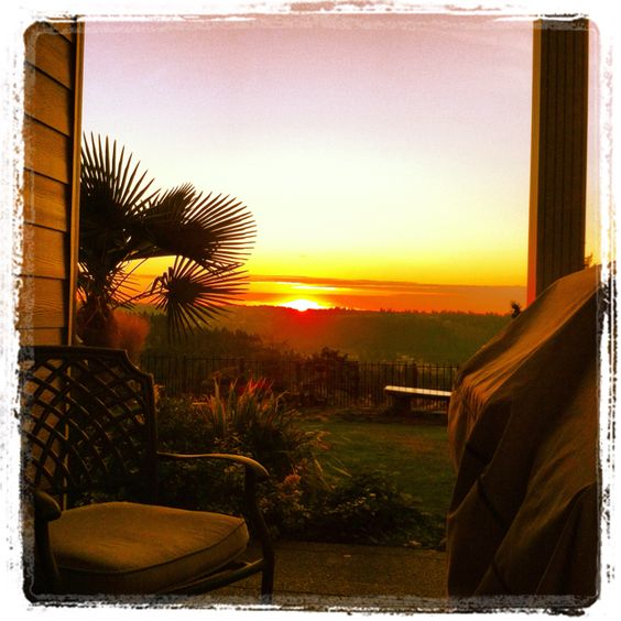 Our backyard #sunsets