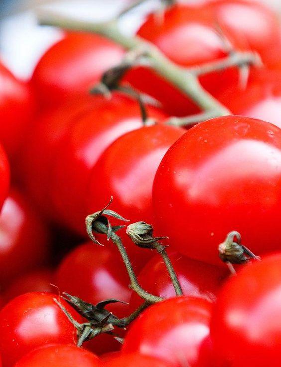 Tomaten Gewichtsverlust in Hindi