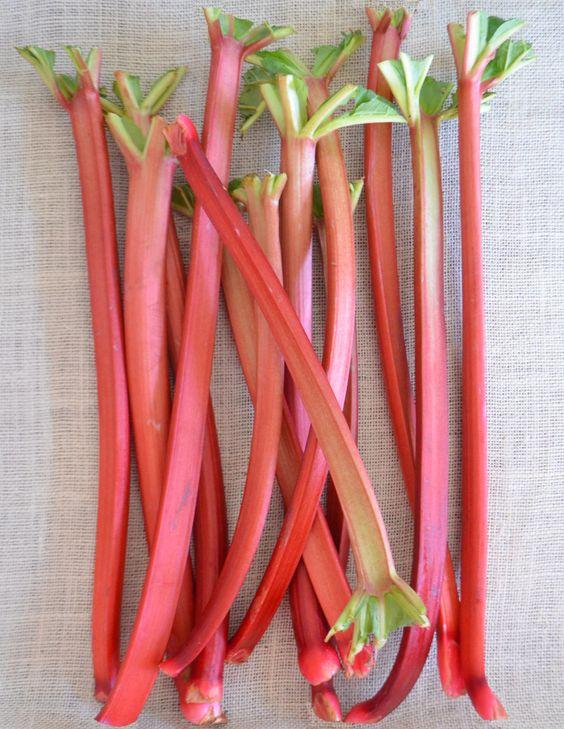 rhubarb crumb cake, vegan - phoebe's pure food