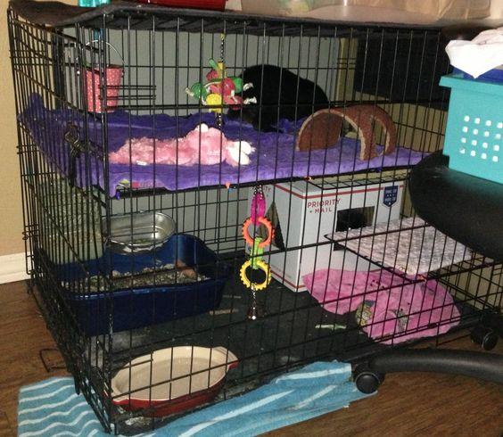 Wire Storage Dog Kennels And Storage Cubes On Pinterest