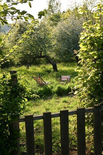 Le charme d'un jardin sauvage loin de tout Photographer: Gilles Trillard