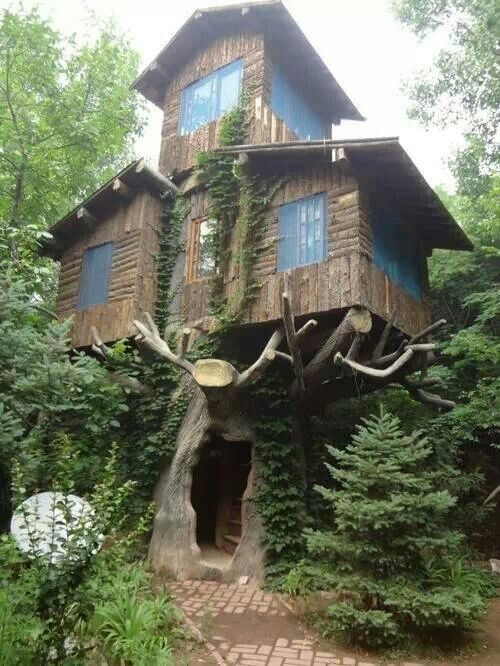 Ron always says he wants to live in a tree house.hmmmmmmmmmmmmmm...wonder if this is what he means?   If so; I could do!