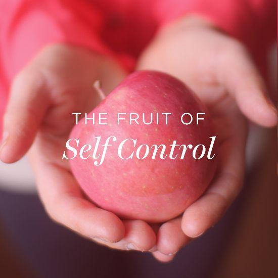 Dashing Devotional: The Fruit of Self Control   Dashing Dish   Bloglovin'