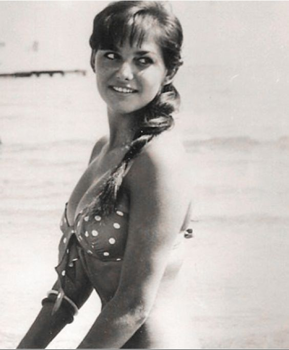 Pity, Dawn wells as mary ann suggest
