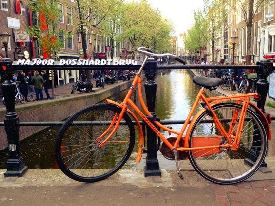 www.destinationany.wordpress.com