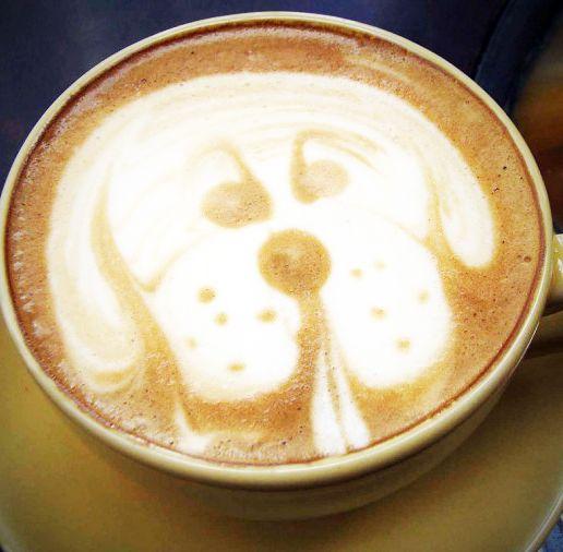 Mit dem #Paulis Kaffee gelingt ein guter Start in den Morgen - wuff #fromaustria.com