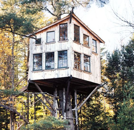 Peter Lewis's Tree house Floating 21 feet off the ground, Peter Lewis's Tree house is attached to an Eastern white pine with the help of a well-engineered suspension system. The two-story tree house looks pretty much like a regular house, but its drawbridge and two spiral staircases remind anyone who visits that this is a fortress-like tree house.