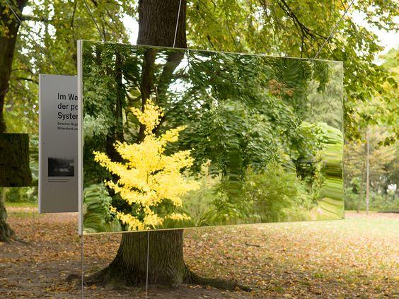 Die Hoffbauer Stiftung im Spiegel der Geschichte