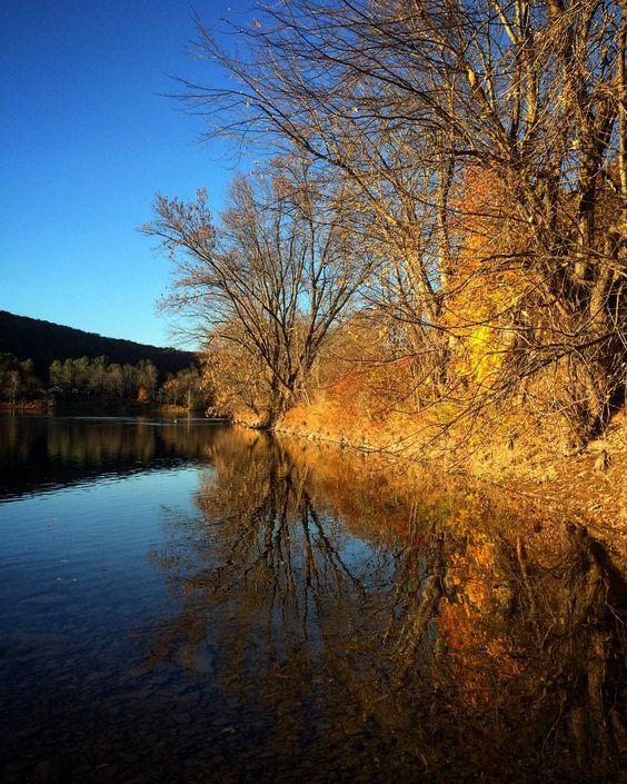 #WonderWatch 2015-141 Clarity Comes #fall #autumn #DelawareRiver #UpperDelawareRiver #SandyLongPhotos #nature #naturephotography #zen #yellow #UpperDelawareRiverRegion #reflection #water