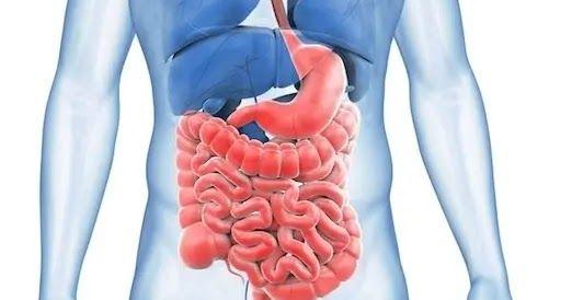 التهاب القولون هو ذلك الإلتهاب المعوي الذي يسبب أعراضا مثل فترات متعددة من الإسهال والإمساك المتناوبةوالتي يمكن أن تحدث بسبب التسمم الغذائي أو الإجهاد أو Colitis