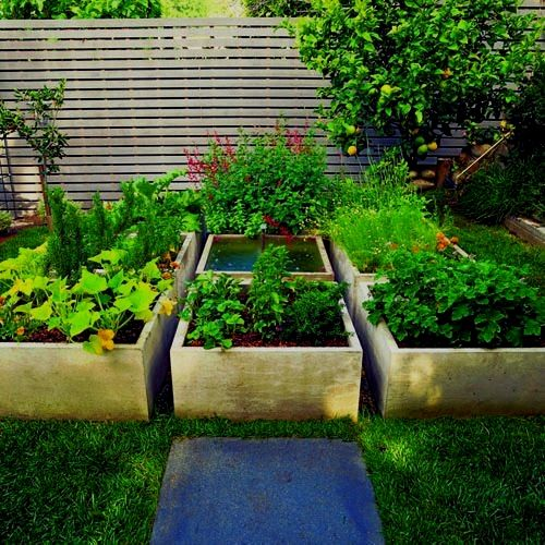 Raised Bed Gardening What Are The Benefits In 2020 Raised