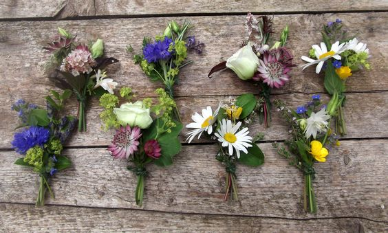 This seasonal collection of buttonholes include cornflower, marguerite daisy, aquilegia, lisianthus and astrantia as the main flower. I used a gorgeous selection of foliage to support and frame the flower including lavender, rosemary, honeysuckle, forget-me-not, and achemilla mollis. It is a great idea to use other herbs such as mint and sage as they offer a fragrance to the buttonhole, that you may not get from using just flowers.