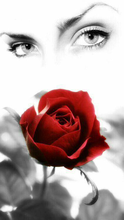 Mai avrei pensato, prima di incontrarti, che l'amore potesse farmi soffrire così, mai avrei pensato di amare al punto di non poter più riuscire a vivere senza te. Quando sono vicino a te il mio cuore batte fortissimo, quando sei lontana niente ha piu senso. Ci sono tanti uomini meglio di me, più giovani, più intelligenti, più belli, ma nessuno, nessuno ti potrà mai amare quanto io ti amo, di questo ne sono assolutamente sicuro. #mimanchidaimpazzire #sempredipiù #buonanotte
