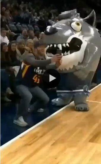 Esse torcedor não teve muita sorte, ele foi engolido pelo mascote.