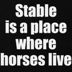 stable is a place where horses live #bipolar