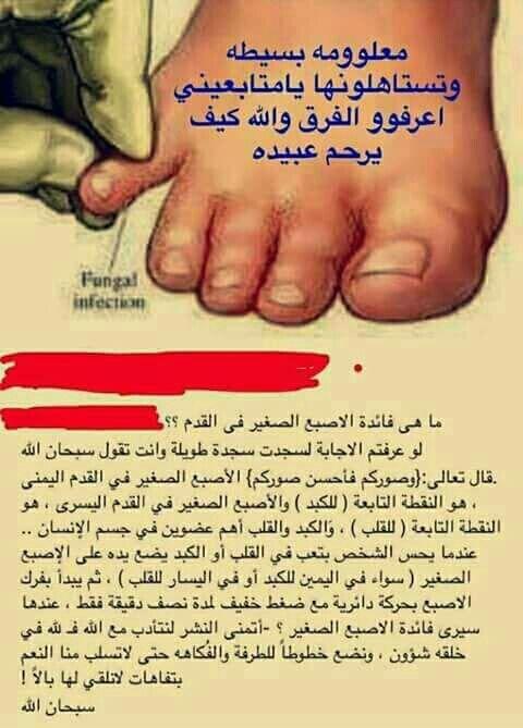 Pin By Anais Anais On خريطة الجسم Islamic Inspirational Quotes Islamic Phrases Inspirational Quotes