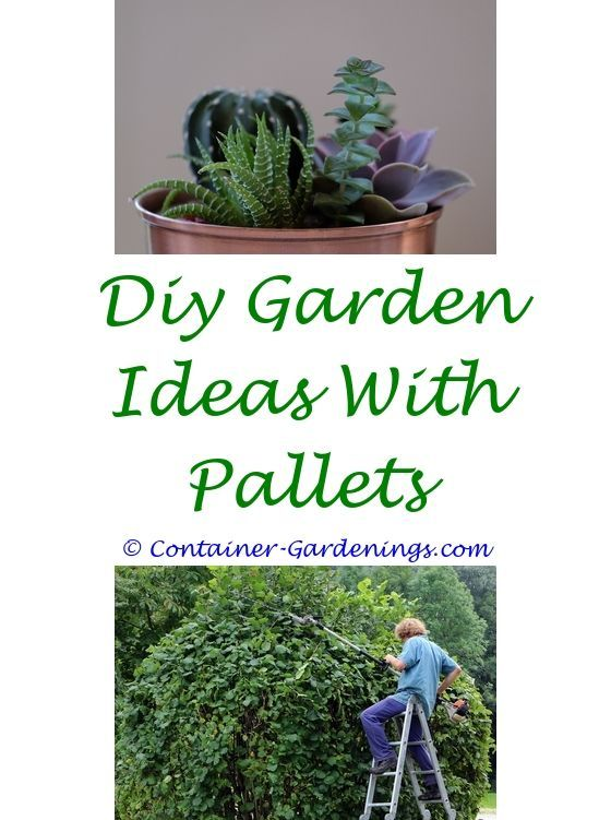 Gardening Ideas For Kids In School Garden Pots Decoration Ideas Gardening Tips Side Mission Small Mos Organic Container Gardening Garden Ideas Uk Garden Pots