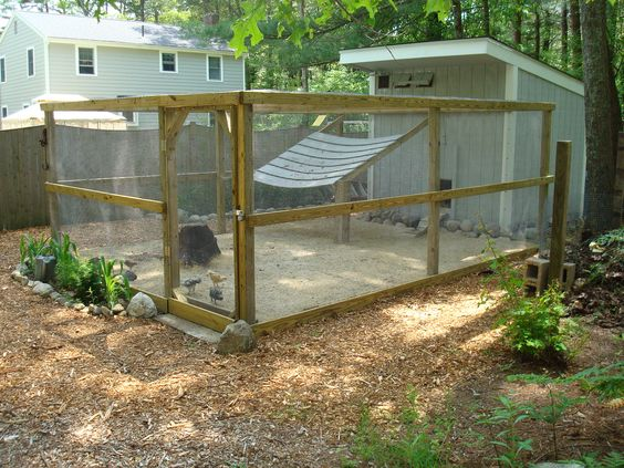 Chicken run large stones around base chickens for Large chicken coop ideas