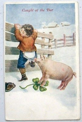 New Year PIG Catches BOY at Fence Postcard Shamrock Luck: