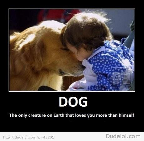 DOG: the only creature on earth that loves you more than himself.