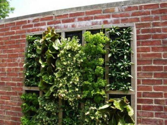 Décoration murale pour la cuisine- 26 idées - vertical-jardin-épices-murale