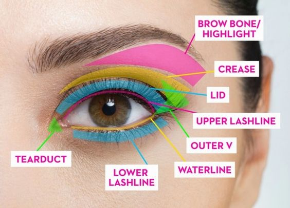 """BROW BONE: pale eyeshadow to open up your eye area LID: for your main shade or shades of eyeshadow  CREASE: a darker shade of eyeshadow here adds dimension to your eye OUTER V: eyeliner or deeper shadow shades applied in a """"V"""" or (softer) """"C"""" shape UPPER LASHLINE: define with eyeliner or eyeshadow WATERLINE:  dark eyeliner for a smokey look / nude eyeliner to make the eye look wider LOWER LASHLINE:  liner and shadow to define the eyes TEAR DUCT: pale shadow here will open eye up"""