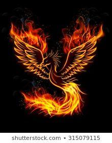 Vectores, imágenes y arte vectorial de stock sobre Phoenix Rising | Shutterstock